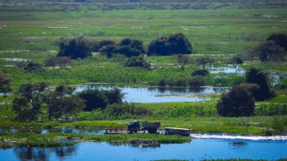 O Pantanal é uma imensa planície de áreas alagáveis