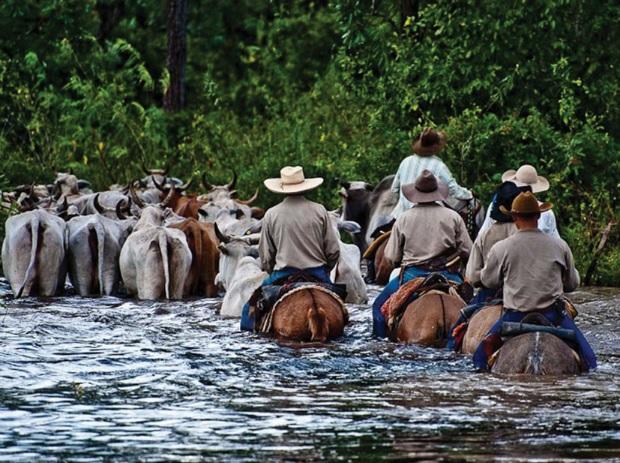 Bacias hidrográficas do Mato Grosso do Sul