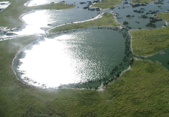 Pantanal – Patrimônio Natural da Humanidade