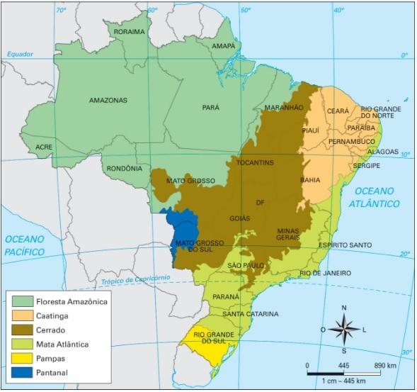 Paraná - Biomas brasileiros