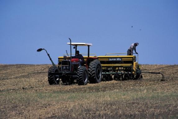Existem hoje modernas máquinas e tratores que executam o trabalho no campo.