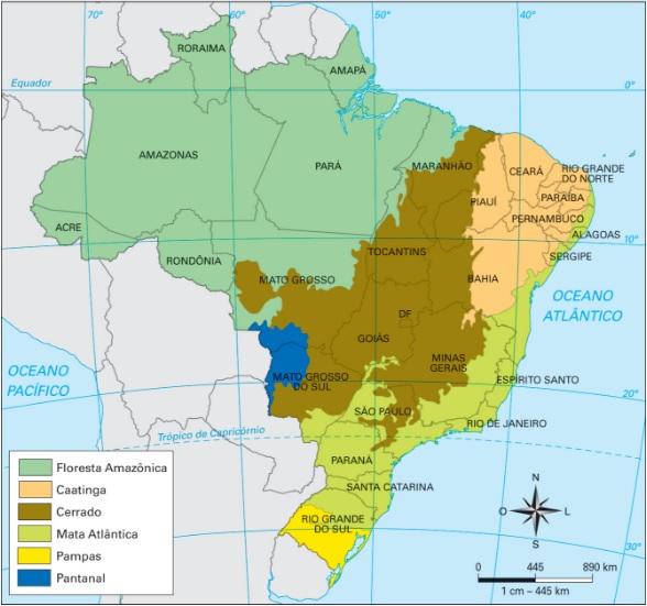 Biomas brasileiros  Santa Catarina