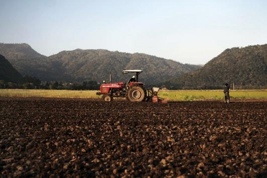 Trator preparando a terra para plantação
